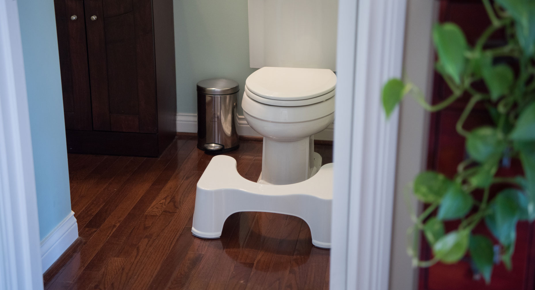 Squatty Potty large